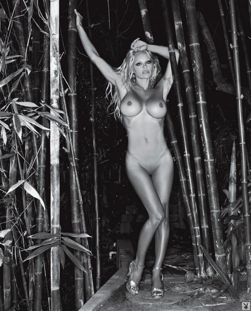 Naked pictures of pamela anderson-7293