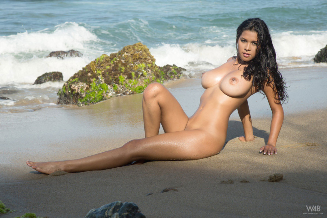 Kendra Roll In Tropical Beach Premium Gallery Gallery Of -4135