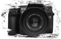 Adrian Photography